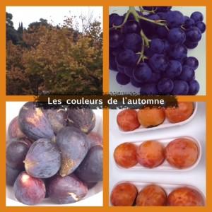 COLORIMETRIE_Les couleurs de l'automne.jpeg